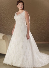 Spaghetti Embroider Plus Size Wedding Dresses
