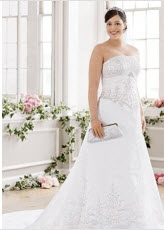 Strapless Embroidery Plus Size Wedding Dresses